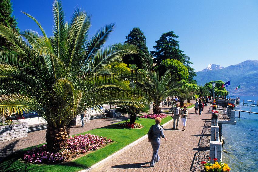 Italien, Lombardei, Comer See, Menaggio: Seepromenade   Italy, Lombardia, Lake Como, Menaggio: seaside promenade