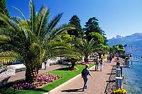 Italien, Lombardei, Comer See, Menaggio: Seepromenade | Italy, Lombardia, Lake Como, Menaggio: seaside promenade