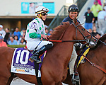 HALLANDALE BEACH, FL - MAR 3:  Scenes from the Fountain of Youth Stakes. Promises Fulfilled #10 in the post parade of the Fountain of Youth Stakes at Gulfstream Park on March 3, 2018 in Hallandale Beach, Florida. (Photo by Liz Lamont/Eclipse Sportswire/Getty Images)