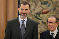 King Felipe VI of Spain at Royal Audiences