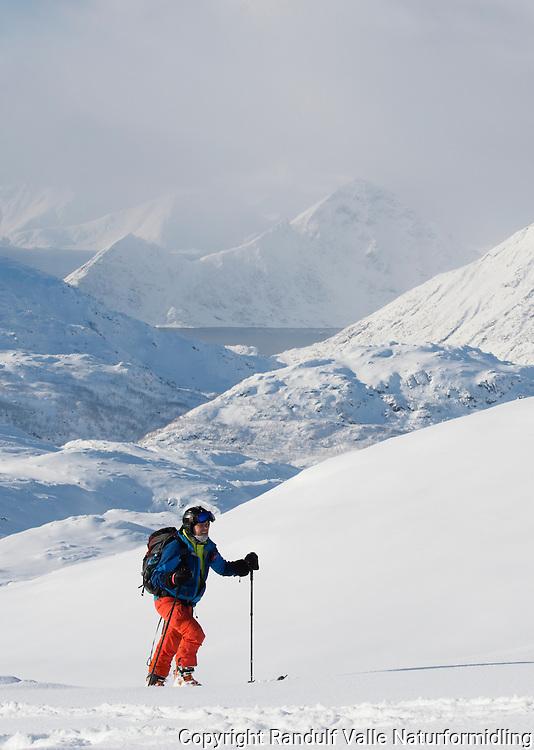 Mann går på ski på Eidvågtind på Seiland. Jøfjorden med Stortinden i bakgrunnen. ---- Skier in Seiland mountains by winter.