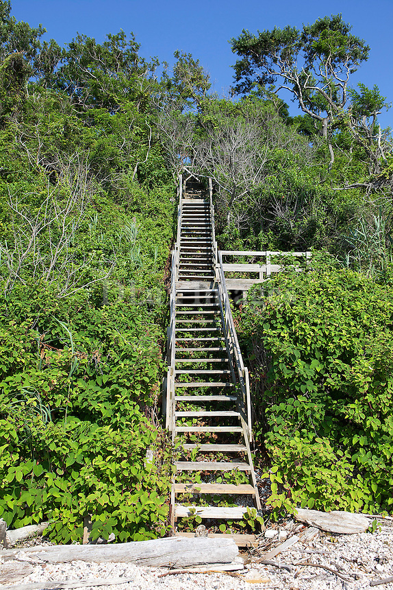 outdoor wooden staircase