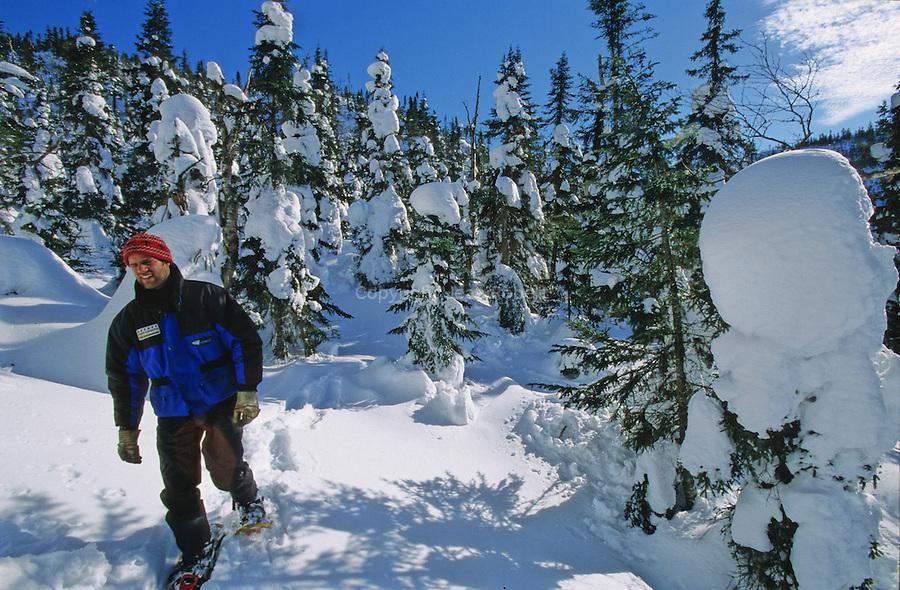 Monts Valin. Régis Fournier, guide disparait jusq'aux épaules dans la poudreuse. Ici les tempêtes de neiges peuvent accumuler six mètres de neige. Seuls le sommet des arbres sort de de la neige et cache des trous très dangereux. Monts Valin, au nord de Chicoutoumi. Québec. Canada.