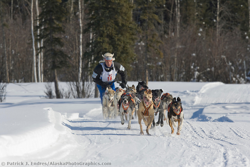 Musher Michael Tetzner, 2007 Open North American Championship sled dog race (the world's premier sled dog sprint race) is held annually in Fairbanks, Alaska.