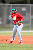St. Louis Cardinals third baseman Rafael Medina (35) during a minor league spring training intrasquad game on March 28, 2014 at the Roger Dean Stadium Complex in Jupiter, Florida.  (Mike Janes/Four Seam Images)