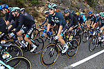 The peloton including Lukas Postlberger (AUT) Bora-Hansgrohe in action during Stage 3 of Tour de France 2020, running 198km from Nice to Sisteron, France. 31st August 2020.<br /> Picture: Bora-Hansgrohe/BettiniPhoto | Cyclefile<br /> All photos usage must carry mandatory copyright credit (© Cyclefile | Bora-Hansgrohe/BettiniPhoto)