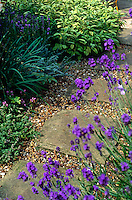 Square paving stone have been laid on a gravel path bordered with low plants