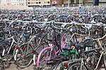 Huge bike park, Delft, Netherlands