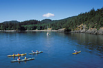 Sea kayaking at Doe Bay, Orcas Island, San Juan Islands, Washington state, USA.