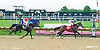 J Be K's Sonnet winning at Delaware Park on 6/27/15