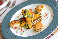 Pan Seared Scallops with grilled polenta over a wild mushroom and tomato ragout.
