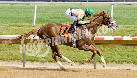 Mr. Continental winning at Delaware Park on 5/28/12