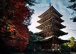 Goju-No-To, Gojunoto, five-storey pagoda in fall nature scenery. Shimo-Daigo part of Daigoji complex, Daigo-ji, Shingon Buddhist temple in Fushimi-ku, Kyoto, Japan 2017