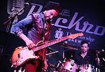 Dan Patlansky - Greystones - Sheffield 2015
