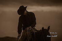 pre dawn cowboy already at work on horseback.
