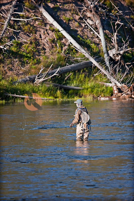 Male Fly fisherman fishing in river