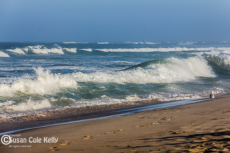 Storm waves at Nauset Light Beach in Eastham, Cape Cod, Massachusetts, USA