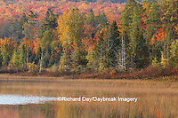 64776-01504 Pond and fall color Alger County Upper Peninsula Michigan