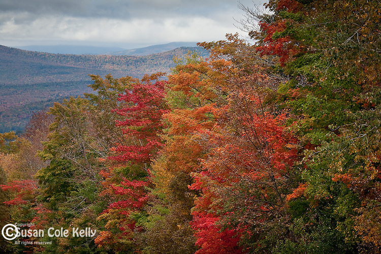 Old Canada Road scenic byway near Caratunk, ME