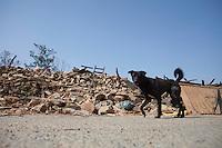 A destroyed house at Dhulikhel, outskirt of Kathmandu, Nepal. May 1, 2015