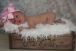 Newborn 17 day new session at The Studio Yosemite, Joelle Leder Photography Studio © 2013