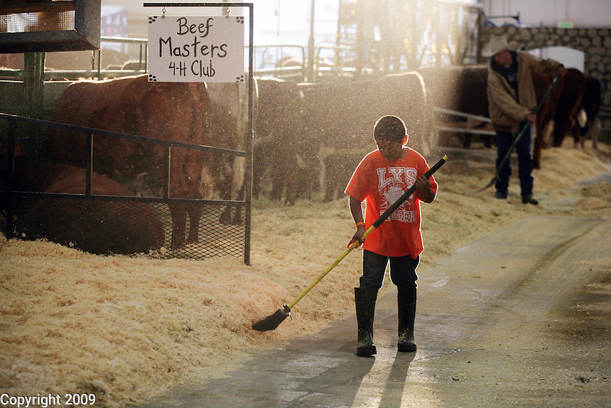 Zane Gavette, 9, of Everson, sweeps up in front of the Beef Master 4H club he belongs to with his brother, Juan. Mother is Debbie- black angus cows-NW Washington Fair. August 18, 2009 PHOTOS BY MERYL SCHENKER