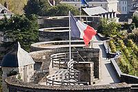 Europe/France/Pays de la Loire/49/Maine-et-Loire/ Angers: le Château , les remparts et la vigne