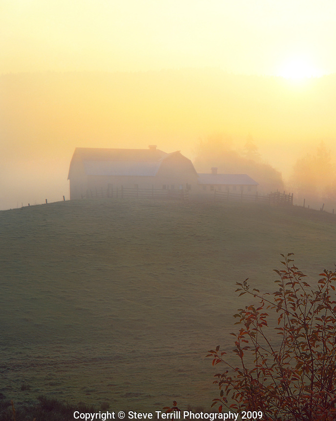 Barn in fog at sunrise in Hood River, Oregon