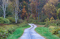 Unpaved rural road.