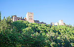 View of the Alhambra over trees and green leaves Granada, Spain