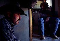 Cowboys cool off in the heat of the day in the bunkhouse at Beef Basin in southeastern Utah.  They are moving cattle to higher ground for the winter where there will be more water and forage.  Many Western ranchers depend heavily on BLM allotments, where grazing fees remain far lower than on state or private lands.