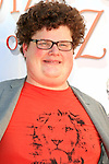 LOS ANGELES - SEP 15: Jesse Heiman at the Premiere of Warner Bros. Home Entertainment's 'The Wizard Of Oz' 3D + Grand Opening of the New TCL Chinese Theater IMAX on September 15, 2013 in Los Angeles, California