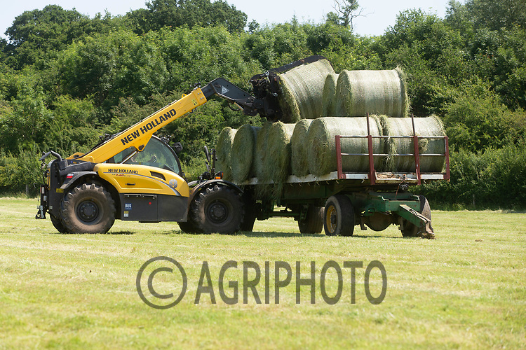 23.6.2020 Carting bales of  Haylage <br /> ©Tim Scrivener Photographer 07850 303986<br />      ....Covering Agriculture In The UK.