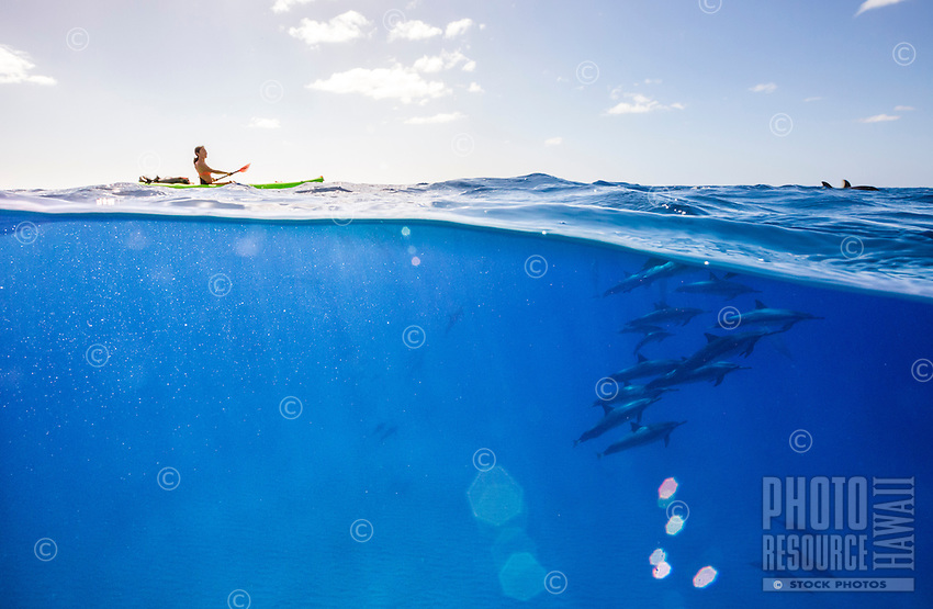 A woman kayaking amid a pod of spinner dolphins near Kahe Point, West O'ahu