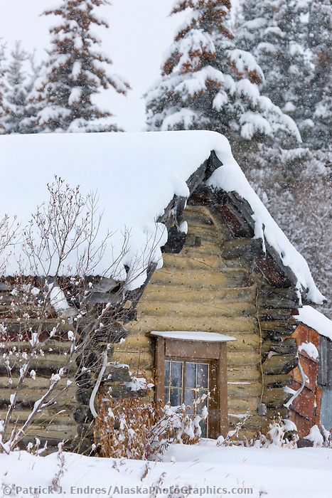 Log cabin in winter, Wiseman, Arctic, Alaska.