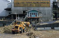 jbo70192 asia Philippines Negros industry biomass energy sugarcane factory sugar cane bagasse for energy production.Asien Philippinen Negros Industrie Zuckerfabrik Fabrik Bagasse aus Zuckerrohr Biomasse zur Energiegewinnung.copyright Joerg Boethling/agenda ph. ++49 40 39190714
