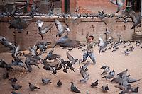A Nepali child plays with pigeons at Pashupatinath Temple in Kathmandu, Nepal.