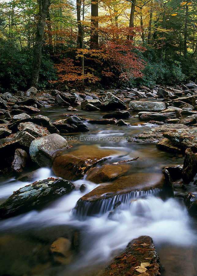 Smoky Mountain Stream, Tennessee.
