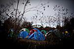 The SafeGround homeless tent camp in Sacramento, Calif., January 14, 2011.