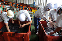 Making wine at Chateau Mercian, Katsunuma, Yamanashi Prefecture, Japan, October 12, 2009.