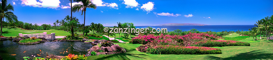 Hawaii, Wailea Gold Course Golf fairway panorama CGI Backgrounds, ,Beautiful Background