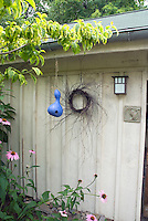 Birds nest gourd hanging on shed with wreath, planted with Echinacea purpurea (purple coneflowers) and variegated dogwood (Cornus)