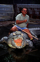 Mick Tabone - Johnstone River Crocodile Farm sits on his friend 'Gregory' a 5.5 metre salt water crocodile.