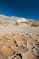 Cracked mud at Salt Creek, Death Valley National Park