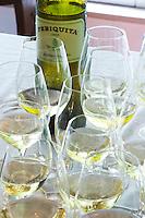 Wine tasting. Wine glasses. Periquita white. JM Jose Maria da Fonseca, Azeitao, Setubal, Portugal