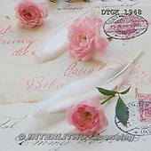 Gisela, FLOWERS, BLUMEN, FLORES, photos+++++,DTGK1948,#f#
