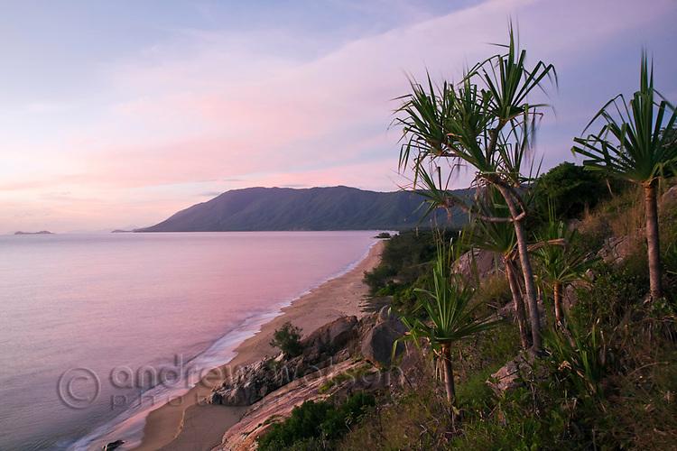 View along Wangetti Beach near Cairns, Queensland, Australia