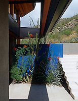 Native plants are juxtaposed with man-made elements and set against a blue wall in this garden designed by Steve Martino