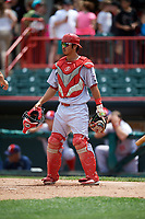 Reading Fightin Phils catcher Chace Numata (50) during a game against the Erie SeaWolves on May 18, 2017 at UPMC Park in Erie, Pennsylvania.  Reading defeated Erie 8-3.  (Mike Janes/Four Seam Images)