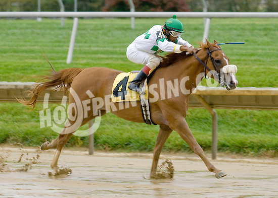 Smoke House winning at Delaware Park on 10/15/12